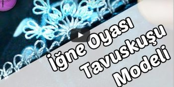 igne-oyasi-tavuskusu-yazma-modeli-ornegi-yapilisi